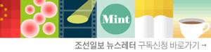 조선일보 뉴스레터